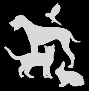 Bildmarke Tierarztpraxis Hubertus Bolte